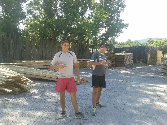 Kúpa dreva