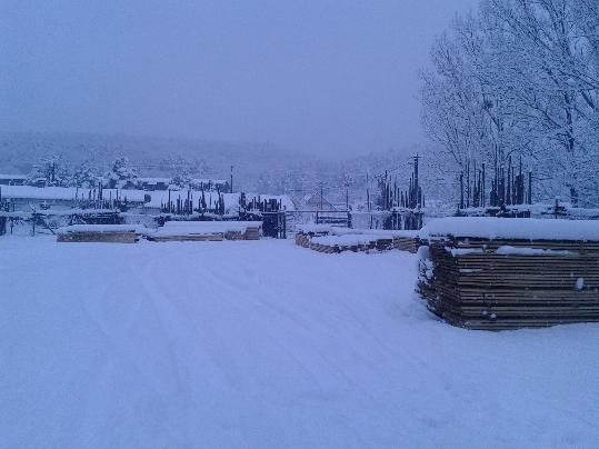 Na rezivo napadal sneh